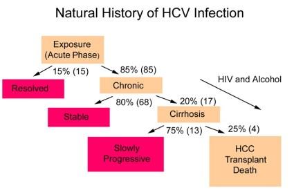 hepatita c poze