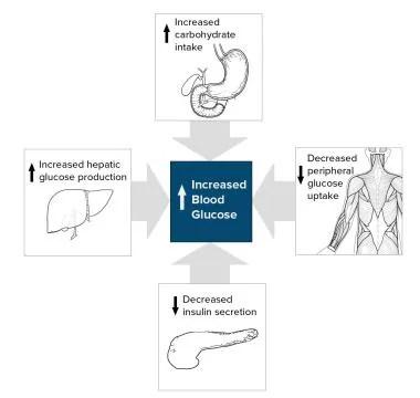 Type 2 Diabetes Mellitus Practice Essentials, Background