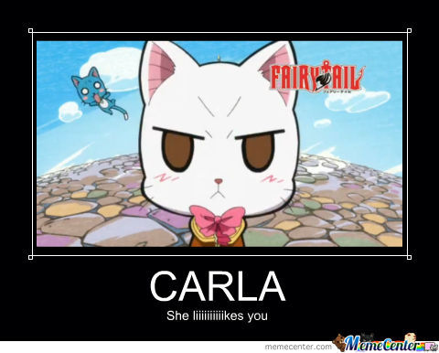Cute Little Gray Cat For Wallpaper Fairy Tail Carla By Pandacub Meme Center