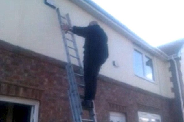 health and safety ladder man video