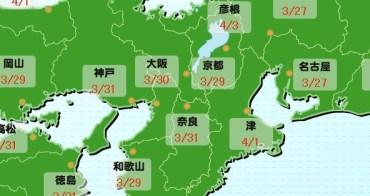 2018大阪櫻花前線情報預測(1/23更新),大阪櫻花季開花滿開時間
