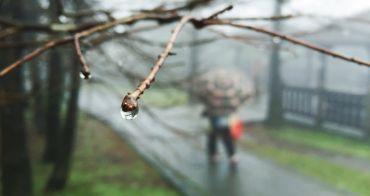 台北士林景點 | 冷水坑 陽明山國家公園 菁山吊橋 牛奶湖 溫泉泡腳