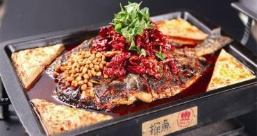 台中公益路美食 另類火鍋「探魚」:大陸最文藝烤魚店@台中南屯區