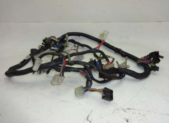 Search results for Wire Harness Yamaha FZR 600 all manufacturing