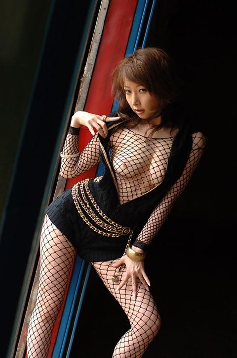 【ヌード画像】全身網タイツを着た美女のエロさは神w(31枚) 22