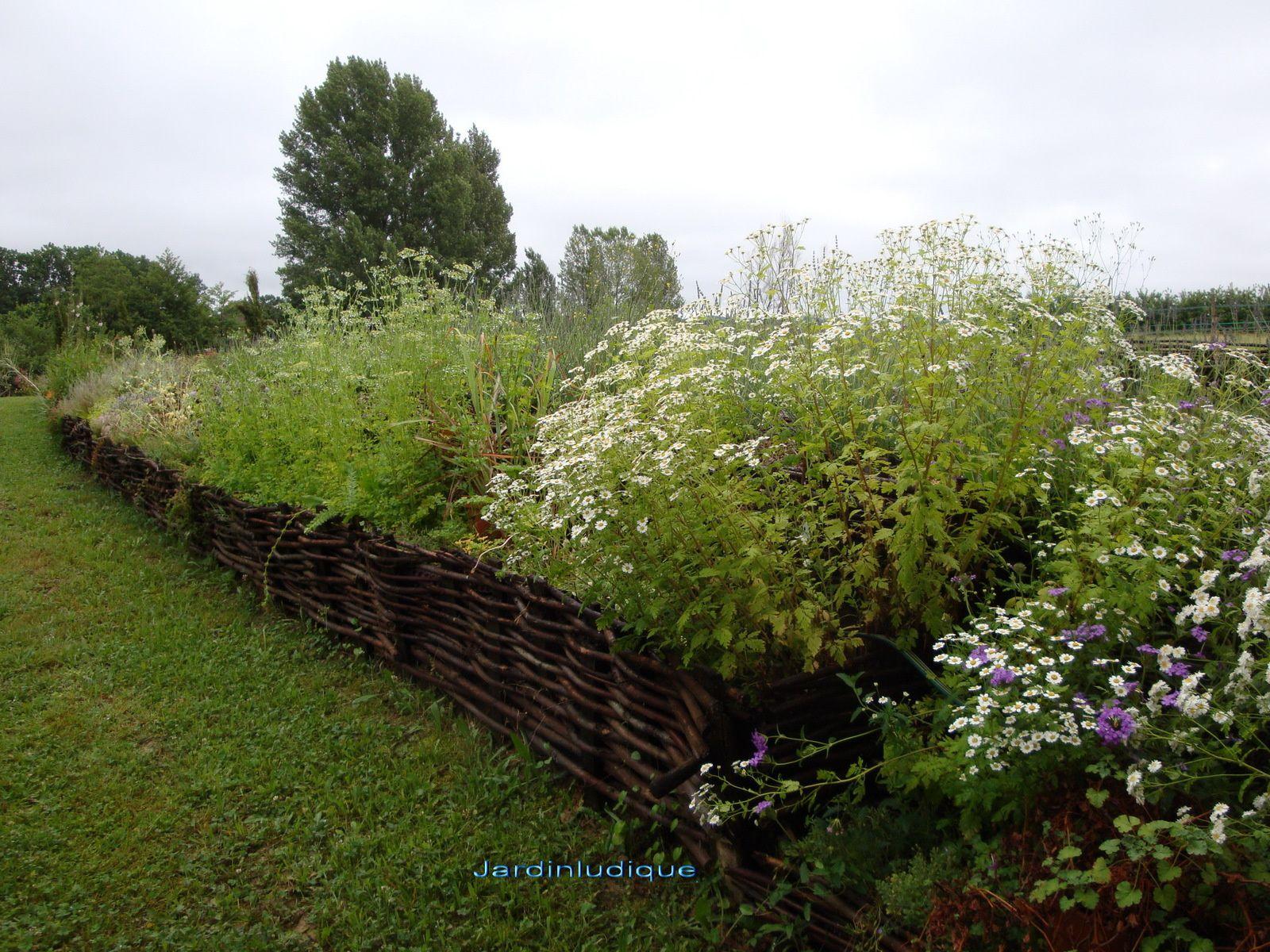 Bordure De Jardin En Noisetier Tressé | Bordure De Jardin En ...