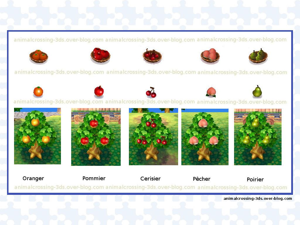 Coupe Arbre Prix Les Arbres Animal Crossing New Leaf