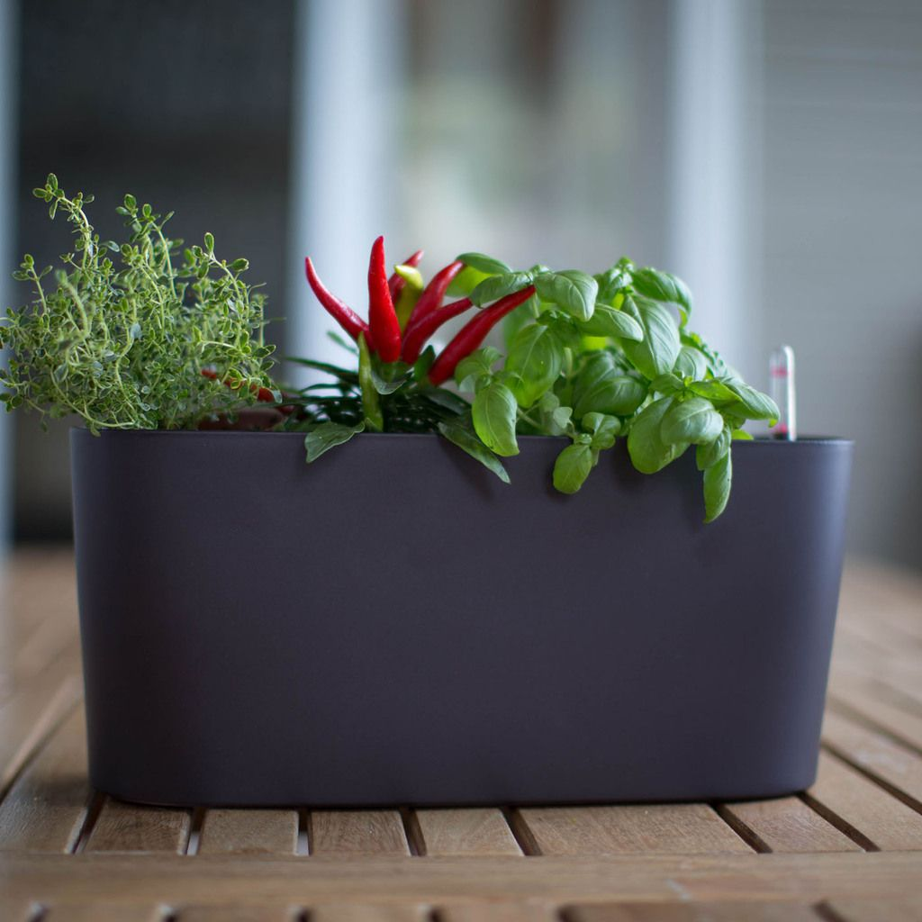 Self Watering Outdoor Planters Self Watering Modern Outdoor Planters An Alternative Way