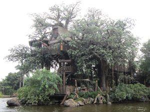 Tarzan X 18 Erotik Filmi Izle Bakburada Film Picture