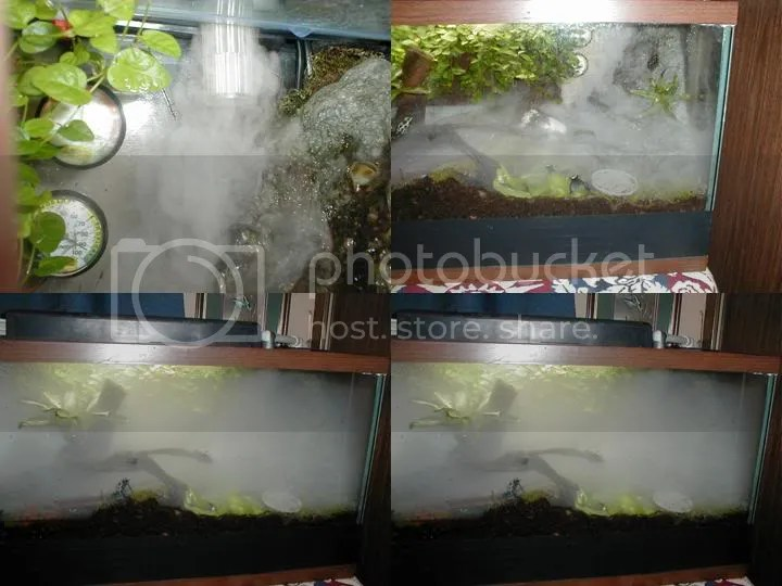 Misters Vs Ultrasonic Humidifier The Planted Tank Forum