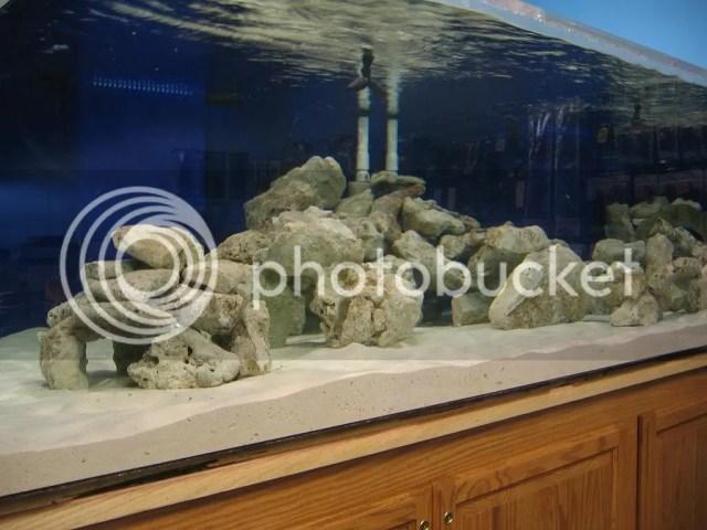 1000 Gallon Aquarium   Reef Central Online Community