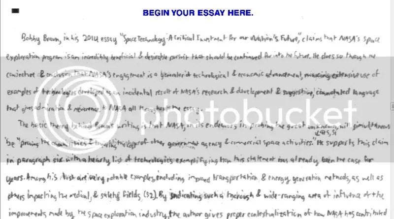 American beauty essay