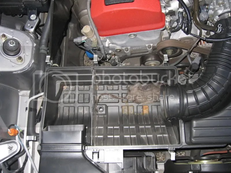So I was changing my air filter and - S2KI Honda S2000 Forums