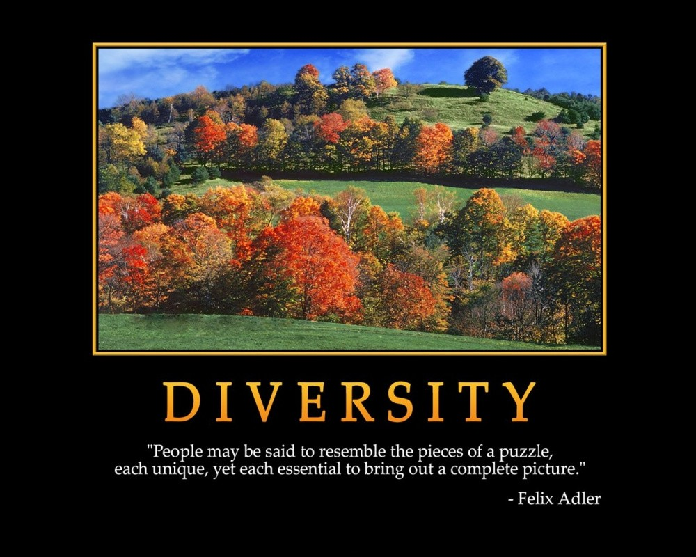 Fall Of Quotations Wallpapers Diversity Quotes Diversity Sayings Diversity Picture