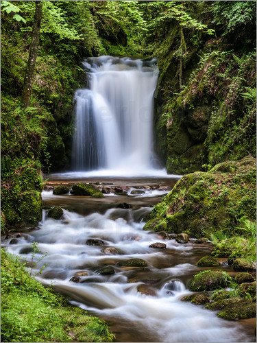 Wandposter Wald Andreas Wonisch Waterfall Of Geroldsau In The Black Forest