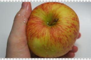 【小風副食品】蘋果汁