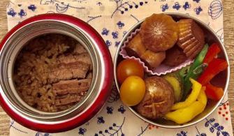 【便當日記】#6聊保溫便當盒 Bento #6 About Insulated Lunch Box