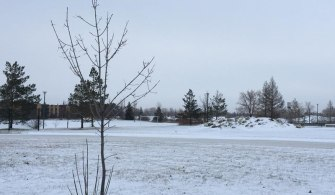 加拿大旅記-下雪天,流感疫苗天Influenza Campaign In The Snow