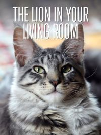 The Lion In Your Living Room (2015) - Watch on Netflix ...