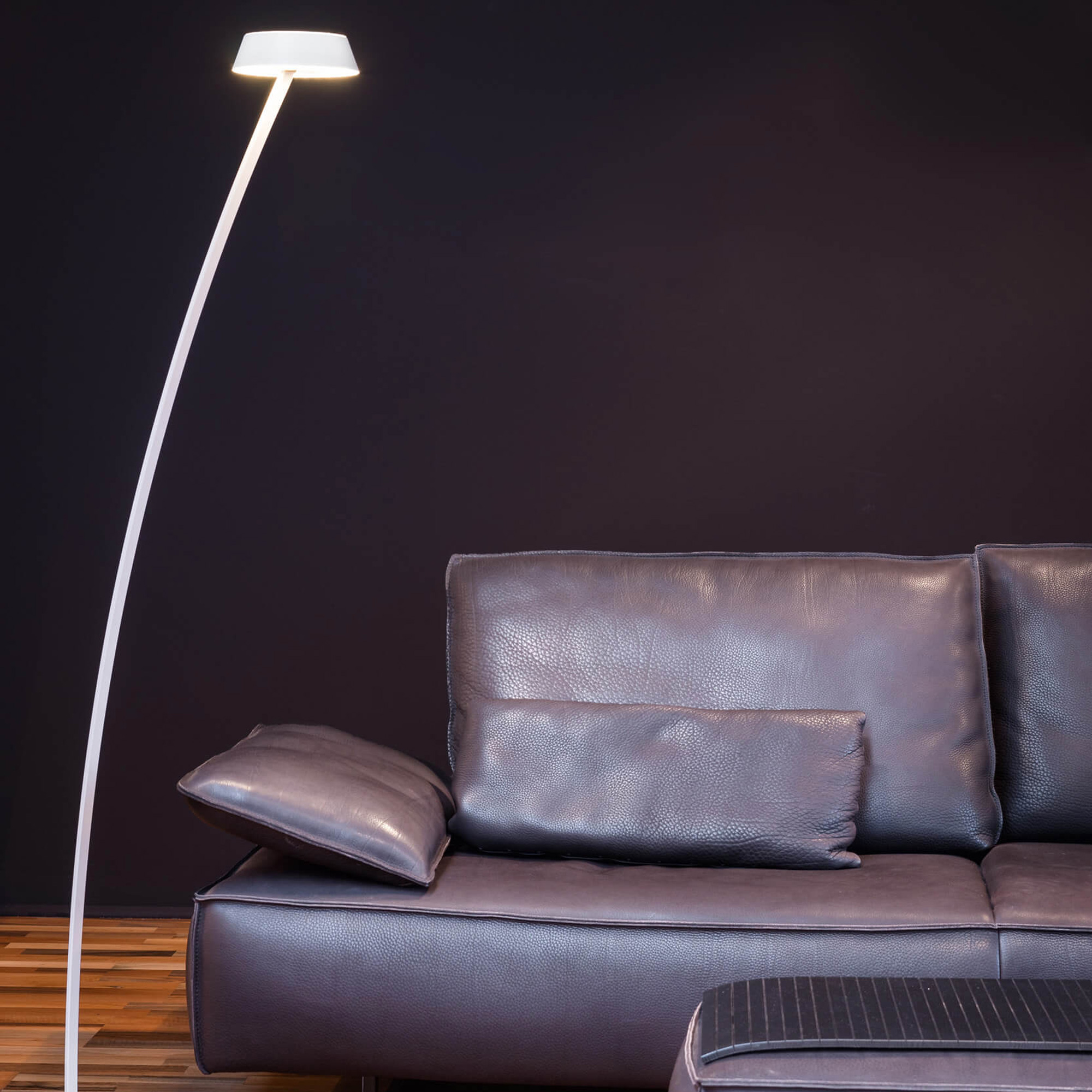 Oligo Plus Glance Led Floor Lamp Curved With Dimmer G44 883 20 21 Reuter