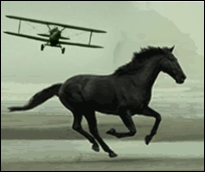 new zealand national bank, horse, north by northwest, airplane attack
