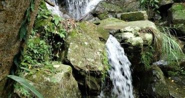 嘉義   仙人堀瀑布 162甲上的梅山秘境  沒有喧囂只有芬多精