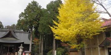 日本河口湖 富士御室 淺間神社 Fuji omuro sengen shrine