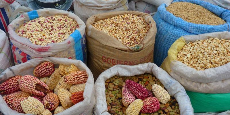 專欄|南美洲秘魯限定十大特色美食 天竺鼠 草泥馬 紫玉米 醃生魚來者不拒