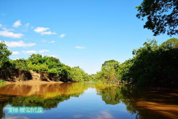 【玻利維亞】前進亞馬遜─鱷魚蟒蛇食人魚、飛鳥猴子粉紅豚