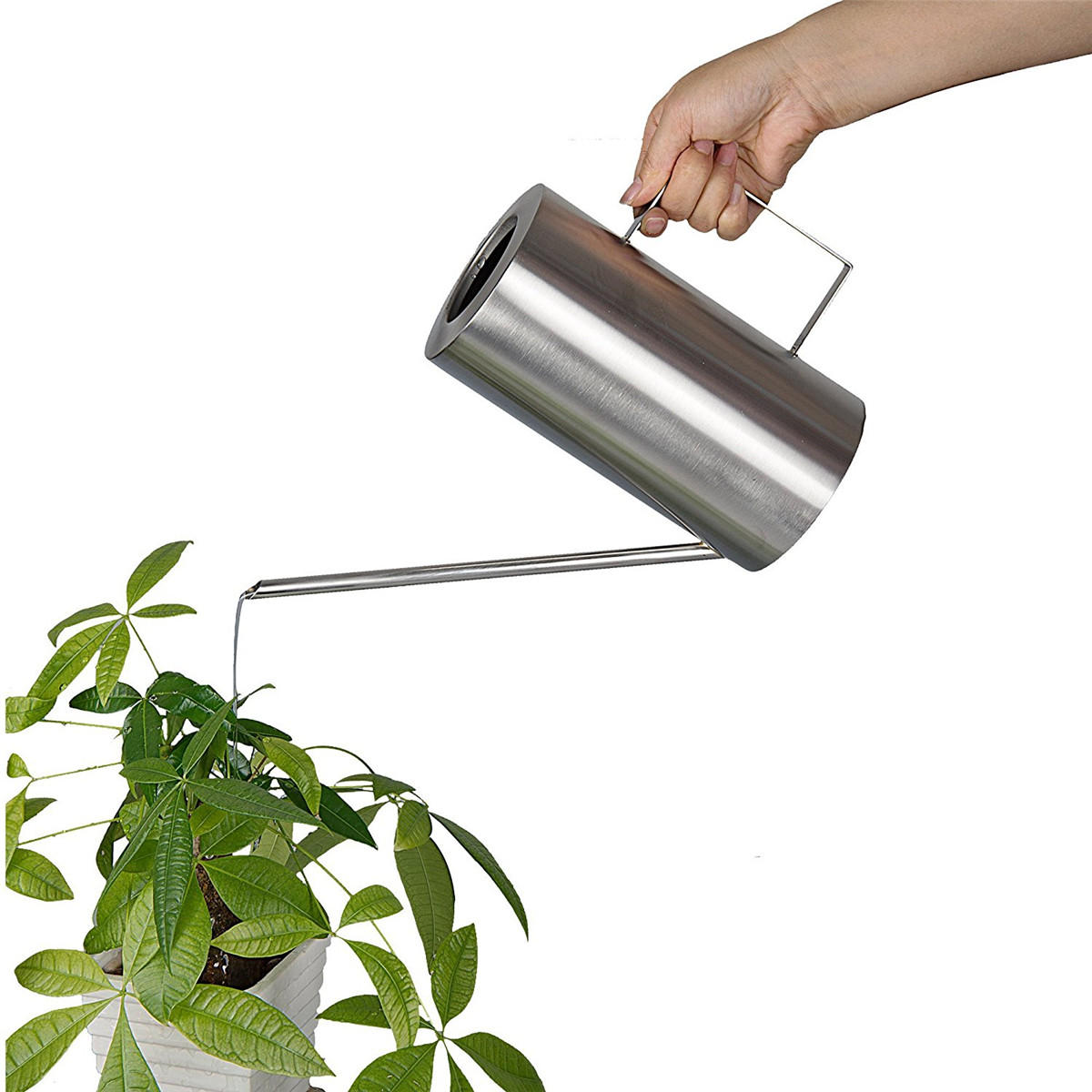 Large Watering Cans For Sale 1 5l Stainless Steel Watering Can Water Container Pot