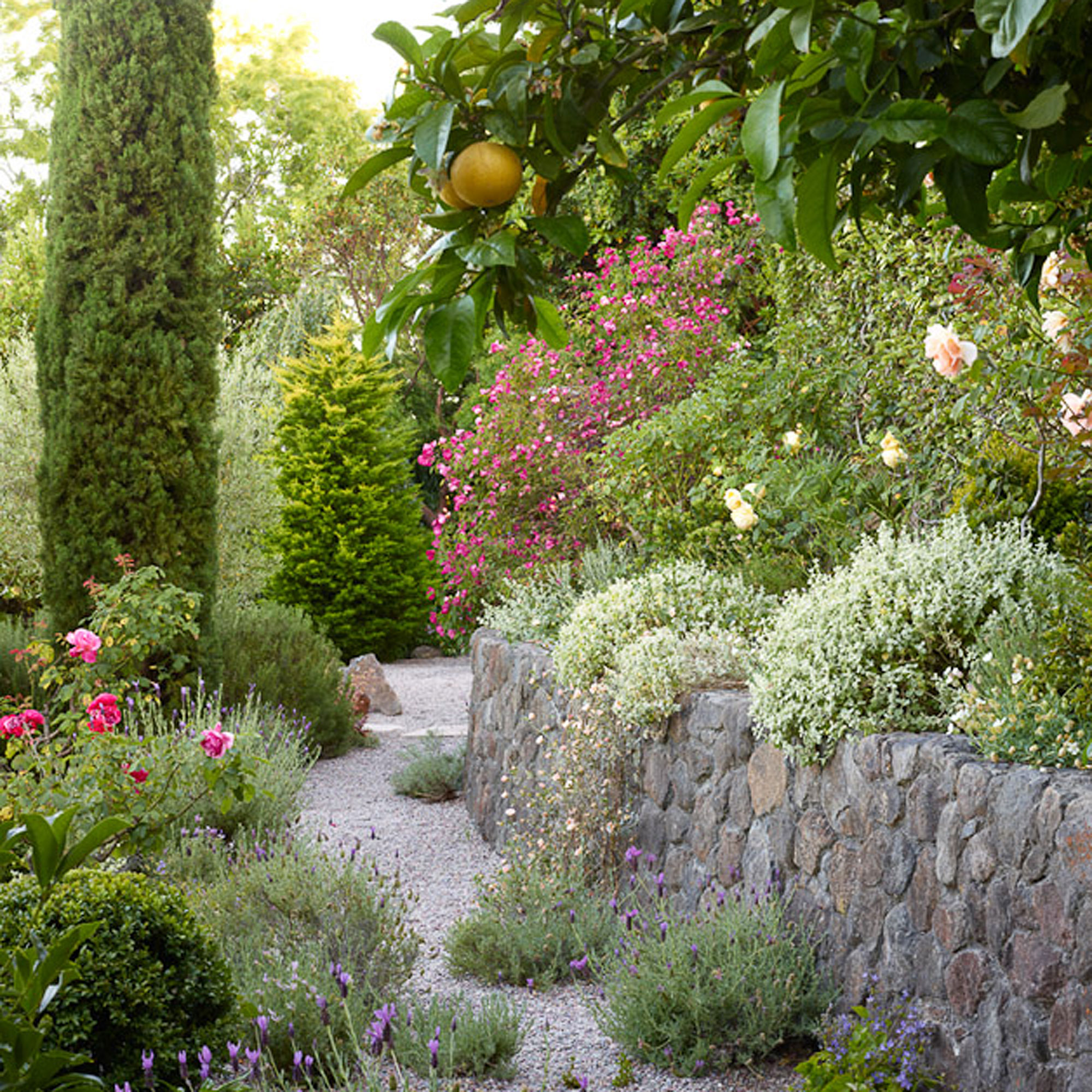 6 Lessons For Mediterranean Climate Gardening Sunset