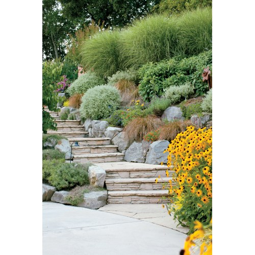 Medium Crop Of Images Of Landscaping Ideas