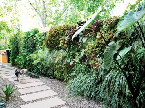 Medium Of Landscaping Ideas Backyard