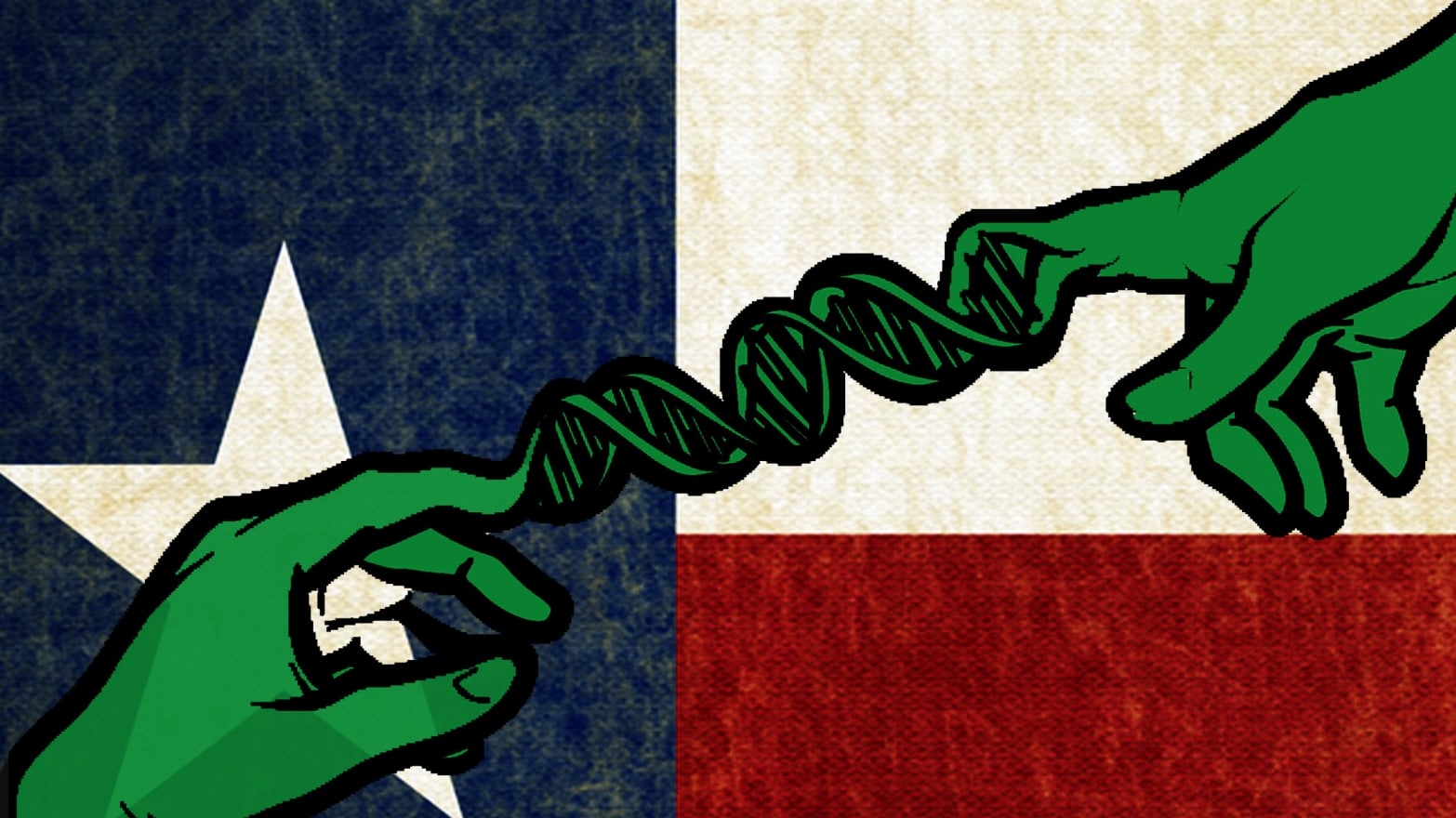 Vol Nantes Lyon Pas Cher Creationism In Texas Could Go Extinct On Election Day