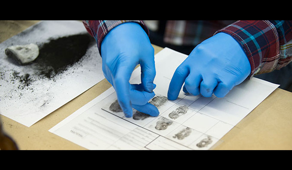Forensic sciences can lead to numerous job opportunities