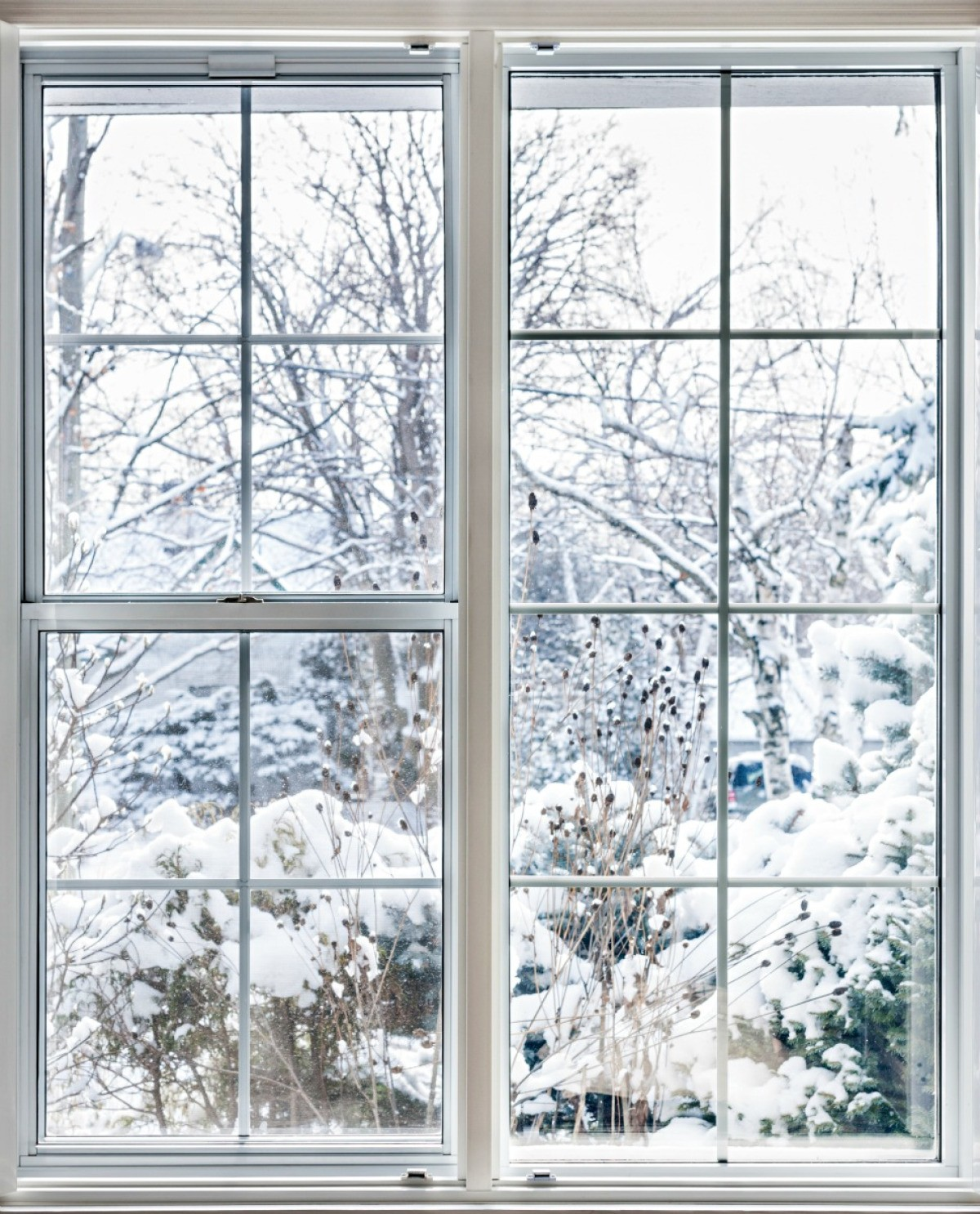 How To Insulate Windows Insulating Windows Thriftyfun