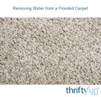 Removing Water from a Flooded Carpet | ThriftyFun
