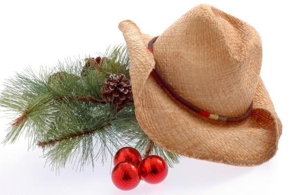 Western Themed Christmas Tree ThriftyFun - western christmas decorations