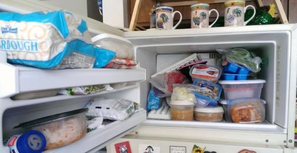 Organizing Your Freezer Thriftyfun