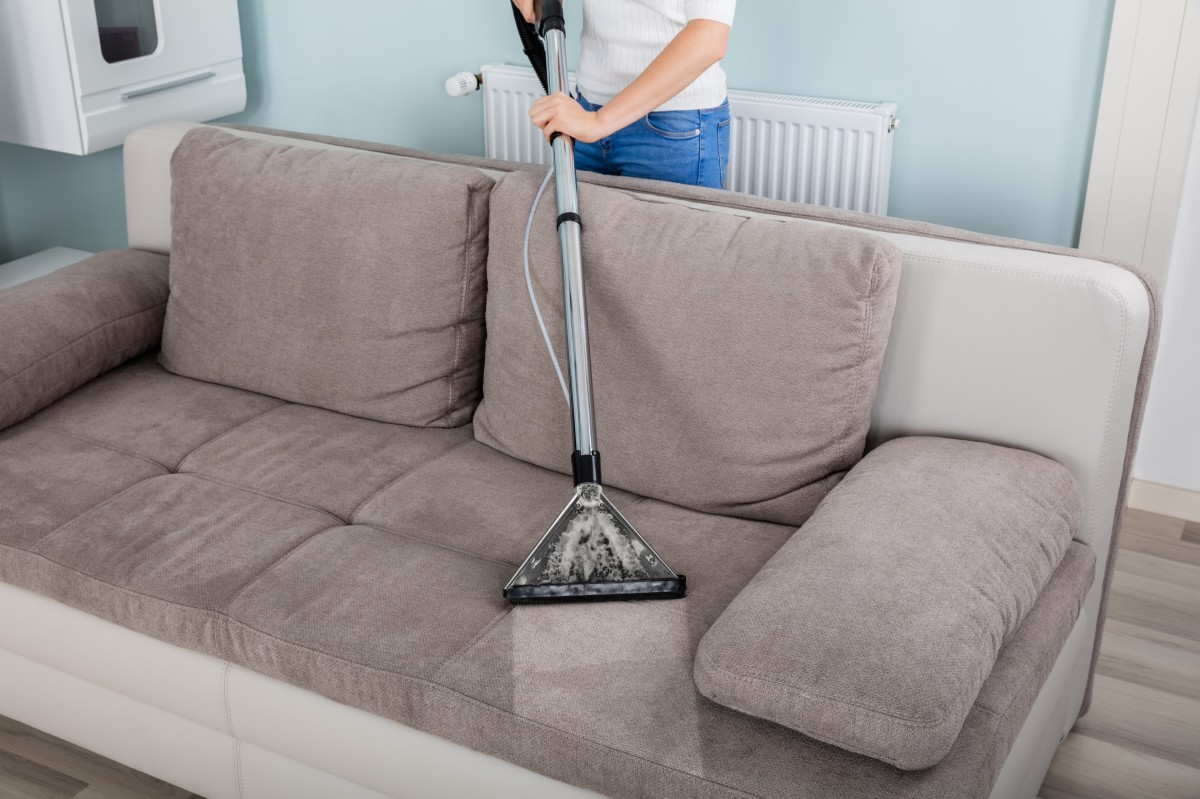 Sofa Foam Cleaner Removing Urine Odors From A Couch Thriftyfun