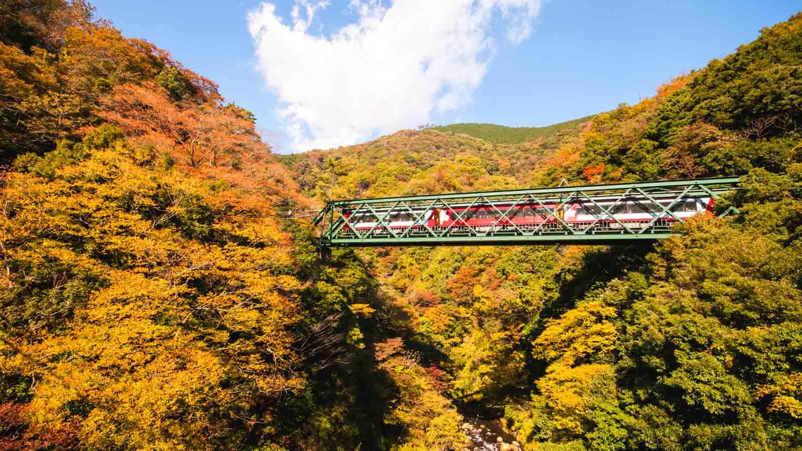 Fall Wallpaper 1600x900 【箱根】秋季紅葉觀賞推薦景點