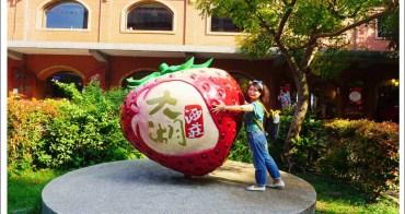 苗栗旅遊》苗栗輕旅行-想吃草莓嗎? 大湖酒莊與草莓文化館來走訪草莓酒的故鄉。