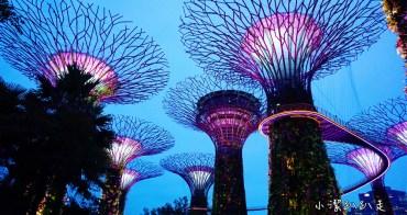新加坡旅遊景點》大推必去!Gardens by the Bay濱海灣花園SUPERTREE GROVE無敵美的超級樹!