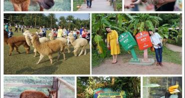 新竹關西景點》北埔綠世界生態農場 可愛草泥馬互動農場 戶外親子同遊踏青趣!