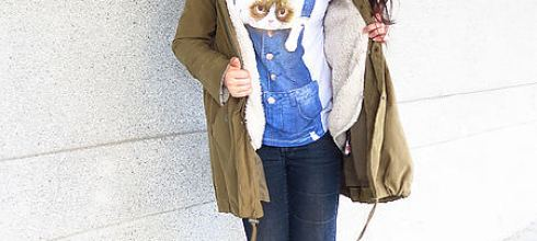 [穿搭] PAZZO、LOVFEE 貓咪圖案T恤穿搭