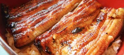 [旅遊] 京都 廣川鰻魚飯