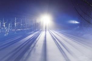 ⭐️北海道青池・白鬚瀑布夜間點燈即將開始!