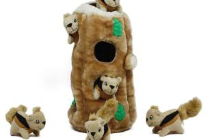 Hide-A-Squirrel Toy for Dogs