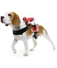 Jockey Pet Costume