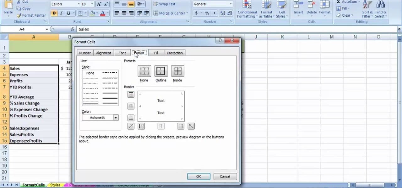 How to Use the Format Cells dialog box in MS Excel 2007 « Microsoft